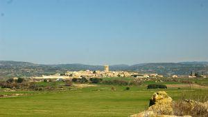Municipio Layana