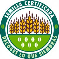 Logotipo semilla certificada